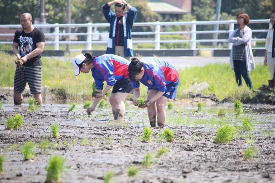 2019田植え4