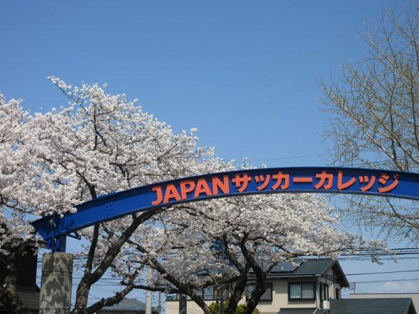 桜2021 (1)